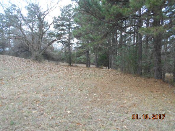 171 Polk Rd. 32, Cove, AR 71937 Photo 19