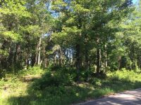Home for sale: Lot 9 Mossy Oak Dr., Lucedale, MS 39452