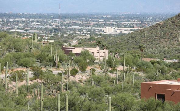 3167 W. Sparkling Starr, Tucson, AZ 85745 Photo 15