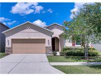 Home for sale: 1109 Lake Highview Ln., Brandon, FL 33510