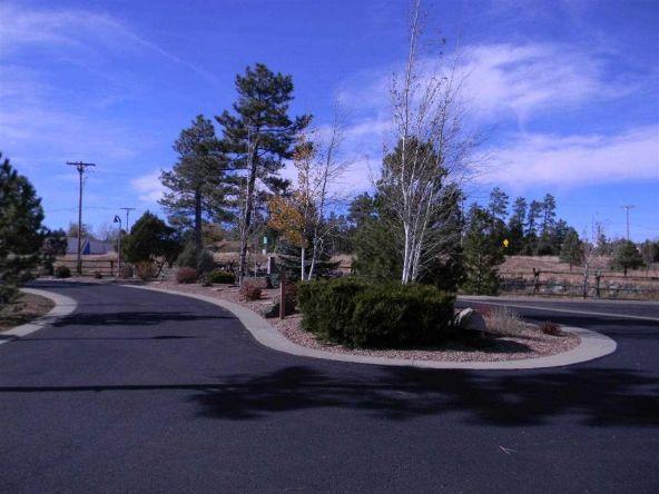 5445 E. S. Elk Springs, Lakeside, AZ 85929 Photo 6