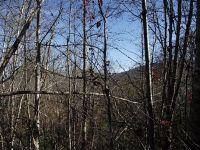 Home for sale: 10 Possum Holler, Bryson City, NC 28713