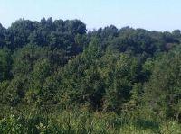 Home for sale: Clover Clover 26 Rd., Highlandville, MO 65669