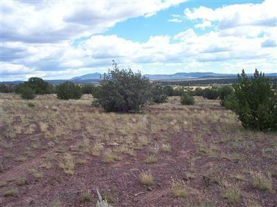 204 Juniperwood Rnch Un 3 Lot 204, Ash Fork, AZ 86320 Photo 9