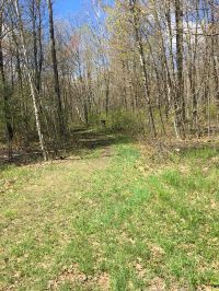 Home for sale: 5 Acres Wilderness Ln., Pittsville, WI 54466