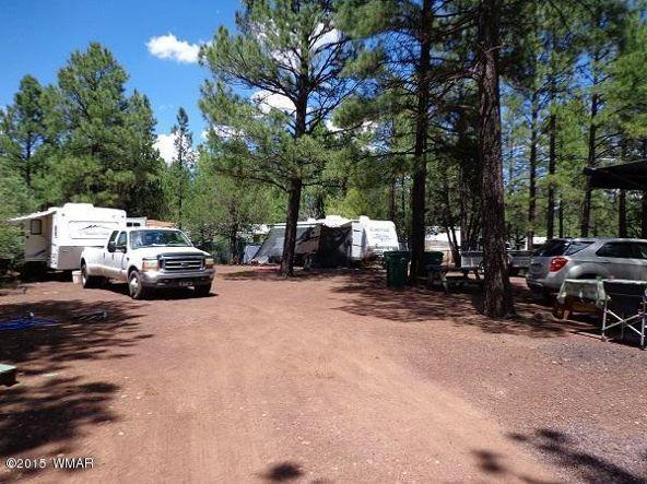 3530 Petes Retreat, Lakeside, AZ 85929 Photo 3