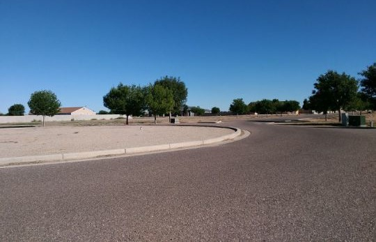 6500 W. Palo Verde Ln., Pima, AZ 85543 Photo 4