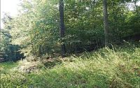 Home for sale: Lot 2 Hopper Rd., Rogers, AR 72756