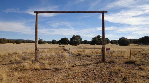 44201 N. Crazy Coyote Way, Seligman, AZ 86337 Photo 14