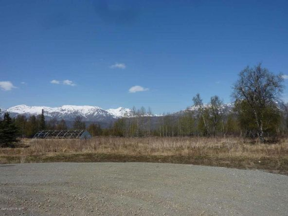 12164 N. Glenn Hwy., Sutton, AK 99674 Photo 2