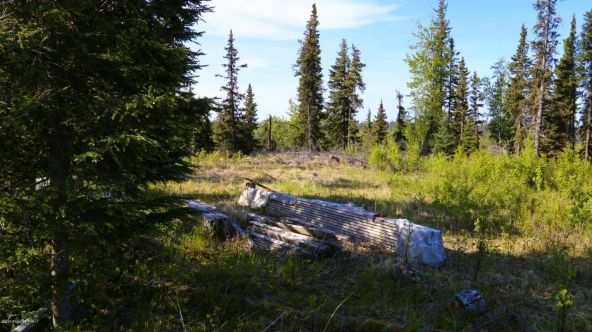35495 Sterling Hwy., Anchor Point, AK 99556 Photo 6