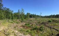 Home for sale: 10 Ac Moccasin Forks Rd., Ponce De Leon, FL 32455