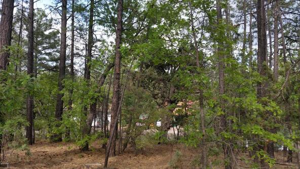 2702 Lockwood Dr., Lakeside, AZ 85929 Photo 2