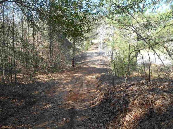 16.9 Acres Private Rd. 1363, Ariton, AL 36311 Photo 10