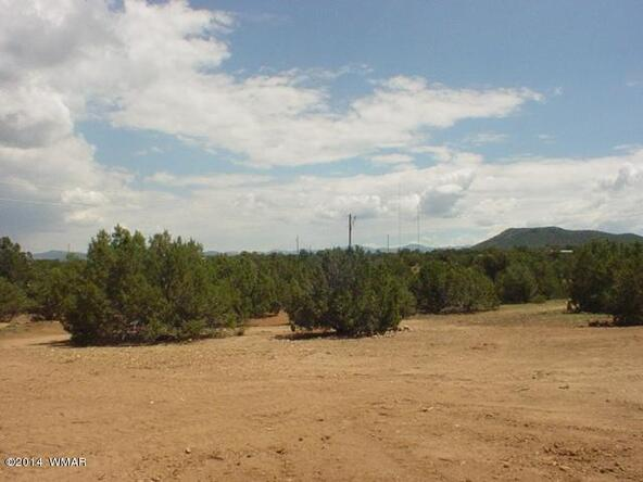 1b N. 8690, Concho, AZ 85924 Photo 30