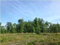 Home for sale: 0 State Rd. 20, Clarksville, FL 32430