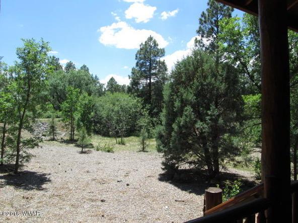 3111 W. Lodgepole Ln., Show Low, AZ 85901 Photo 39