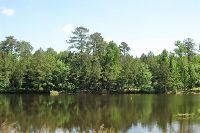 Home for sale: Cool Springs, Roberta, GA 31078