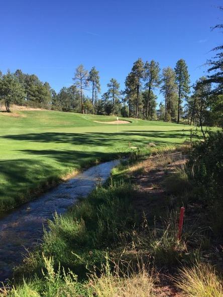 602 S. Pine Strm Stream, Payson, AZ 85541 Photo 12