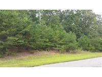 Home for sale: Rolling View Ln., Maiden, NC 28650