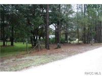 Home for sale: 6520 N. Nature Trail, Hernando, FL 34442