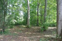 Home for sale: 01 Bent Tree Way, Yadkinville, NC 27055
