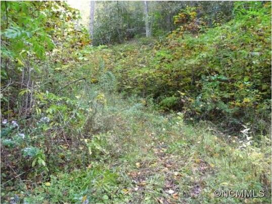 16 Briggs, Robbinsville, NC 28771 Photo 4
