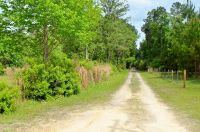 Home for sale: 00 Ford Rd., Bryceville, FL 32009