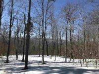 Home for sale: Lot #2 Woodsman Rd. Ext, Dover, VT 05356