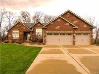Home for sale: 8917 Wendell Creek Dr., Saint Jacob, IL 62281