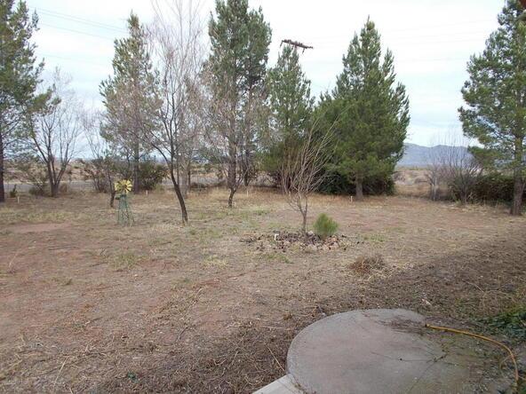 4115 W. Hopkins Rd., McNeal, AZ 85617 Photo 81