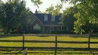 Home for sale: 2946 Pleasant Dr., Nashville, GA 31639