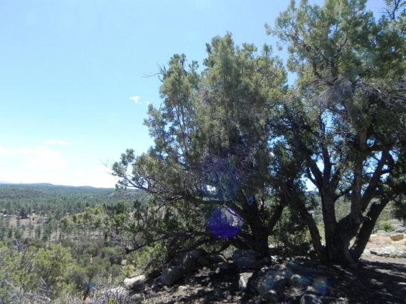 6953 Jacks High Rd., Show Low, AZ 85901 Photo 20