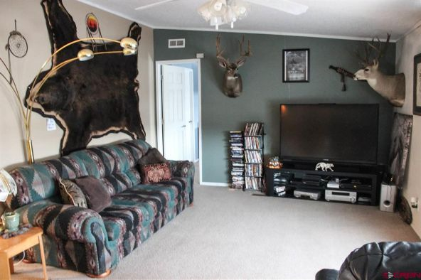 30333 Old West Rd., Hotchkiss, CO 81419 Photo 35