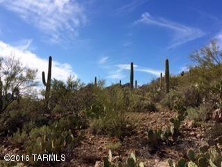 4980 Cactus Wren Avenue, Tucson, AZ 85746 Photo 2