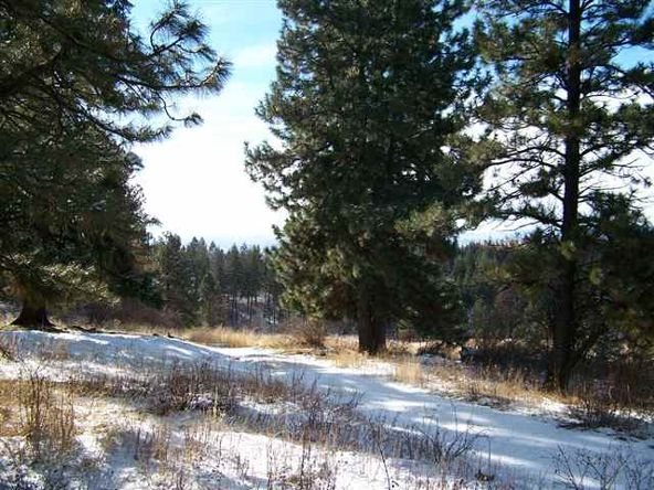 62 Little Fall Creek, Council, ID 83612 Photo 2