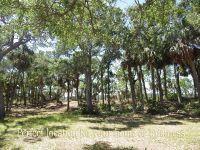 Home for sale: 121 Jungle Rd., Edisto Island, SC 29438