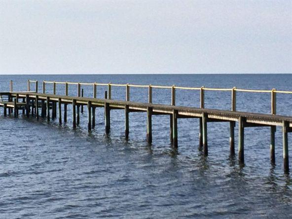 116 Laughing Gull Ln., Carrabelle, FL 32322 Photo 16
