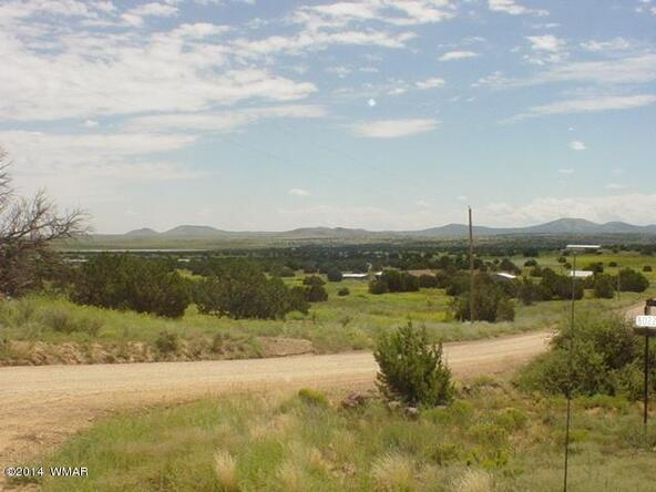 1b N. 8690, Concho, AZ 85924 Photo 8