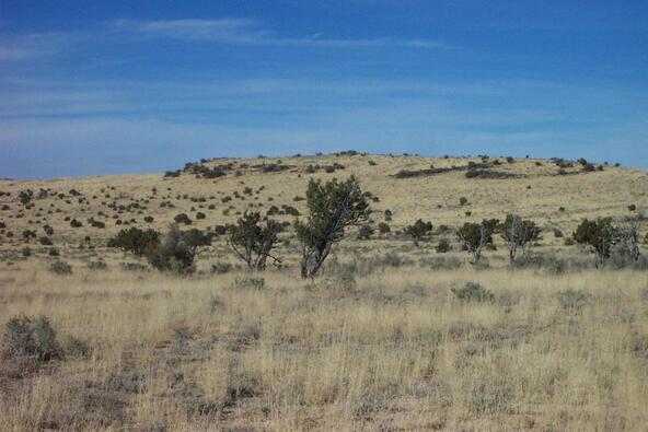 6218 S. Prairie Grass Ln., Williams, AZ 86046 Photo 17