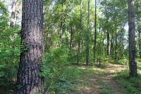 Home for sale: 445* Hiawatha Farms Rd., Monticello, FL 32344