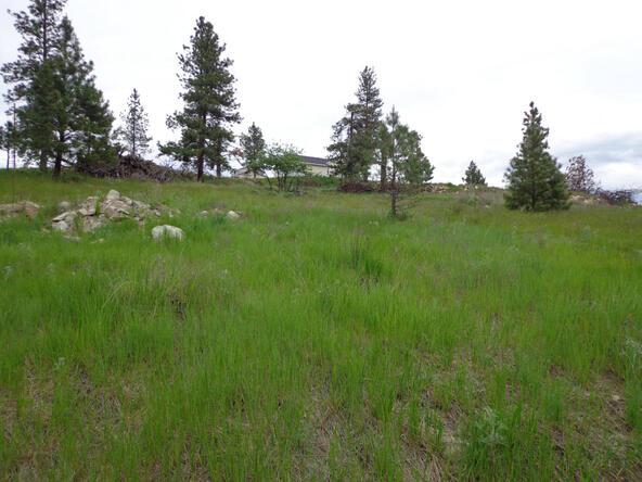 Lot 10 Stabenfeldt Dr., Republic, WA 99166 Photo 22
