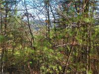 Home for sale: 2 Valley Dr., Weaverville, NC 28787