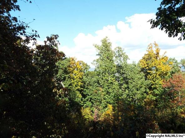 10 S. County Rd. 89, Mentone, AL 35984 Photo 19