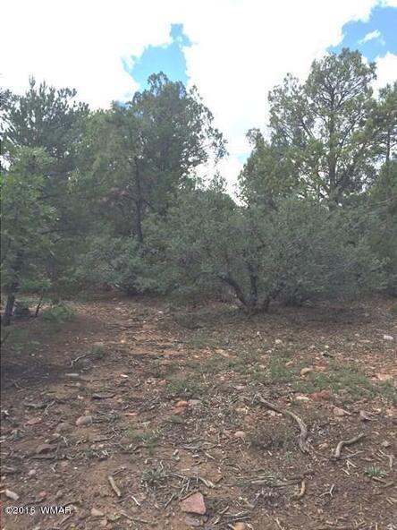 800 E. Pine Oaks Dr., Show Low, AZ 85901 Photo 6