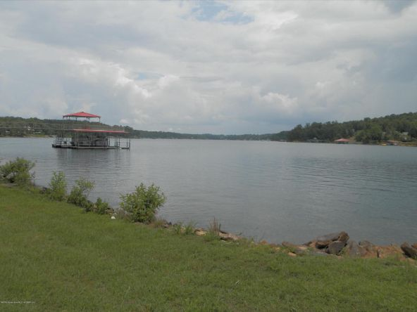 238 Brannon Point Overlook, Arley, AL 35541 Photo 16