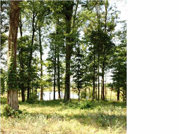 5980 Serenity Dr. Lot 5, Mount Vernon, IN 47620 Photo 31
