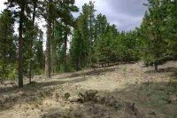 Home for sale: Tbd Lot 46 Snowcat Rd., Lead, SD 57754