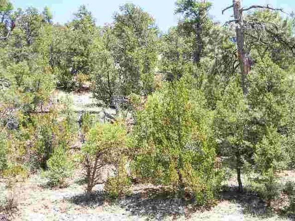 1855 Hwy. 260, Heber, AZ 85928 Photo 2