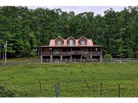 Home for sale: 561 Grindstaff Rd., Butler, TN 37640